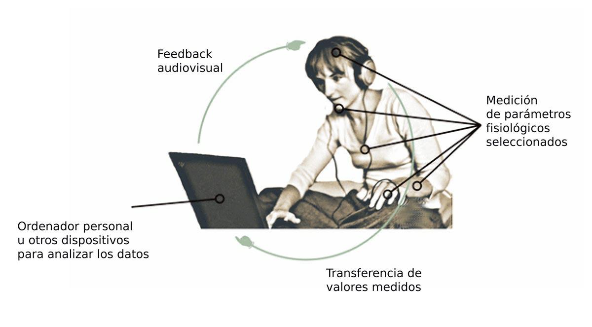 Biofeedback y coherencia cardíaca
